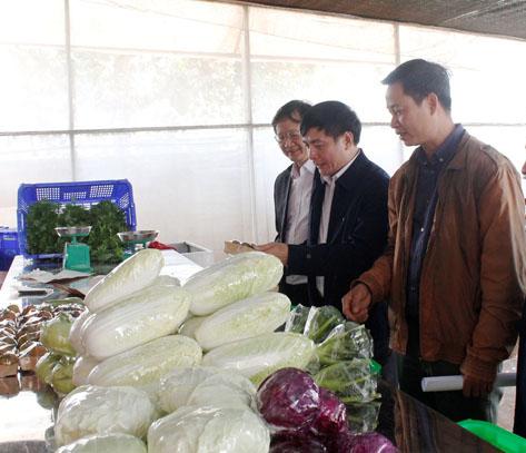 Công bố TTHC mới thuộc Sở Nông nghiệp và Phát triển nông thôn