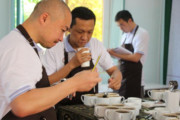 Đắk Lắk sẽ tham gia chia sẻ kinh nghiệm Dự án đổi mới sáng tạo ngành cà phê với các quốc gia