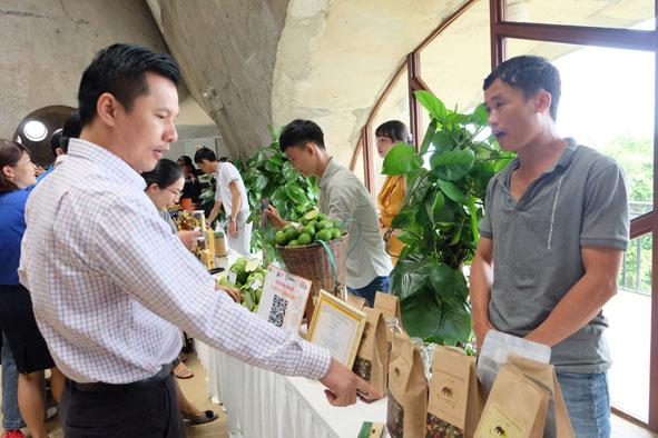 Có 147 ý tưởng, đề án tham dự Cuộc thi Khởi nghiệp, khởi sự kinh doanh tỉnh Đắk Lắk năm 2020