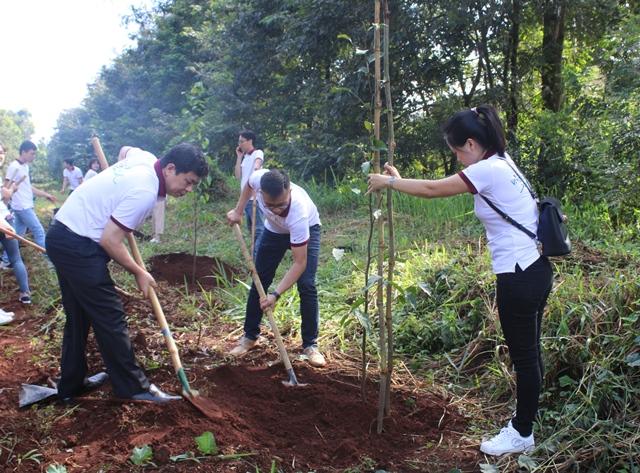Agribank Đắk Lắk phấn đấu trồng 1.000 cây xanh trong năm 2020
