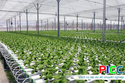 Quyết định về việc cho Công ty TNHH Xuân Thiện Đắk Lắk thuê 1.076.070,9m2 đất tại xã Ea Kpam, huyện Cư M'gar để sử dụng vào mục đích thực hiện dự án Khu nông nghiệp ứng dụng công nghệ cao Xuân Thiện Cư M'gar