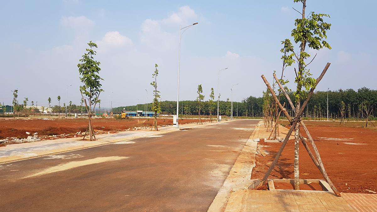 Buôn Ma Thuột: Mở rộng đô thị cho người dân dựng nhà