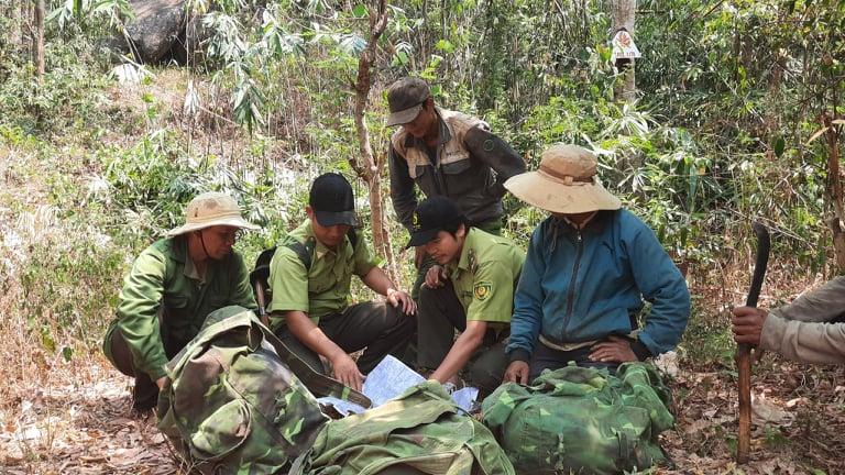Đắk Lắk thu hơn 39 tỷ đồng tiền dịch vụ môi trường rừng