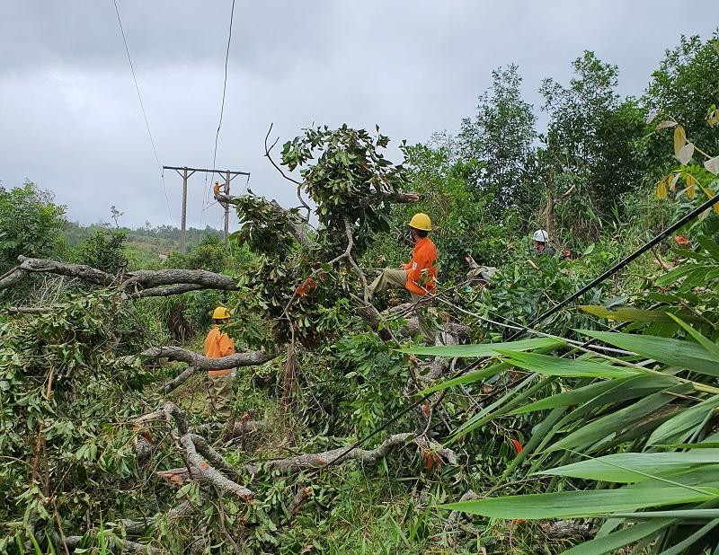 PC Đắk Lắk khôi phục cấp điện trở lại cho hơn 16.500 khách hàng bị ảnh hưởng bởi bão số 5