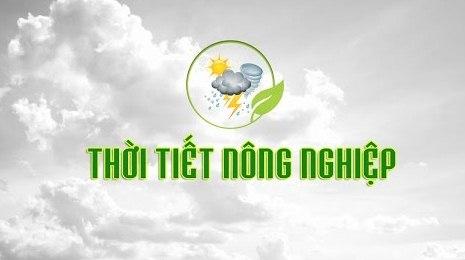 Xây dựng Hệ thống thông tin cảnh báo thời tiết nông nghiệp, ứng phó biến đổi khí hậu