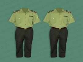 Phê duyệt kế hoạch lựa chọn nhà thầu mua sắm trang phục Kiểm lâm