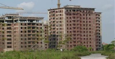Rà soát, báo cáo tình hình thực hiện các dự án xây dựng nhà ở