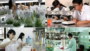 Định mức xây dựng, phân bổ dự toán kinh phí đối với nhiệm vụ khoa học và công nghệ có sử dụng ngân sách nhà nước trên địa bàn tỉnh