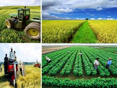 Tình hình thực hiện Chương trình nông thôn mới 6 tháng đầu năm 2016 trên địa bàn tỉnh.