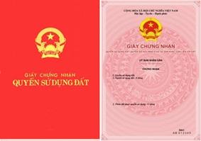 Quyết định giao 1.256 m2 đất tại phường Tân Lợi, thành phố Buôn Ma Thuột cho UBND phường Tân Lợi