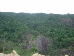 Đề nghị hỗ trợ kinh phí để bảo vệ rừng tại Vườn Quốc gia Chư Yang Sin