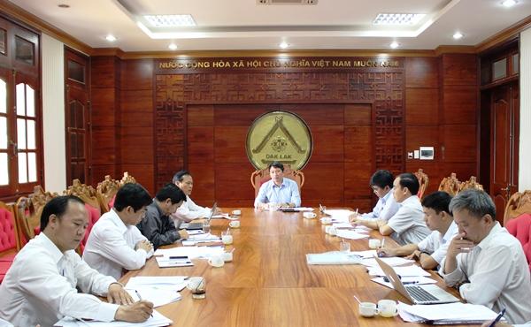 UBND tỉnh họp bàn về công tác tái canh cà phê trên địa bàn tỉnh