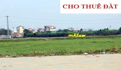 Quyết định cho Doanh nghiệp tư nhân thương mại Năm Ngọc thuê 11.687 m2 đất tại xã Ea Tir, huyện Ea H'leo