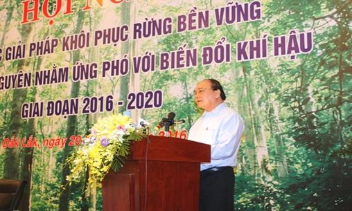 Triển khai Quyết định số 3315/QĐ-BNN-TCLN ngày 12/8/2016 của Bộ Nông nghiệp và Phát triển nông thôn