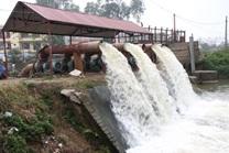 Hỗ trợ kinh phí xây dựng trạm bơm chống hạn thuộc Công trình thủy lợi Buôn Triết, huyện Lắk