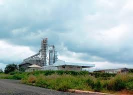 Bố trí mặt bằng cho các Doanh nghiệp thuê đất tại Cụm công nghiệp Ea Ral, huyện Ea H'leo