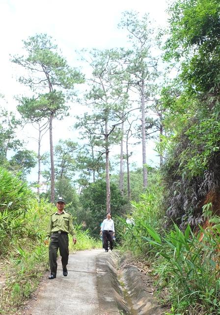 60 tỷ đồng đầu tư dự án xây dựng và phát triển Vườn Quốc gia Chư Yang Sin giai đoạn II.