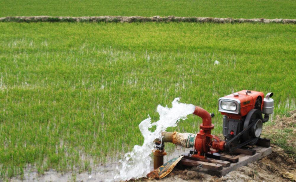 Điều chỉnh nguồn vốn cấp hỗ trợ kinh phí khắc phục hậu quả hạn hán vụ Đông Xuân năm 2015 – 2016 tại huyện M'Drắk