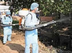 Tăng cường công tác phòng chống sốt xuất huyết
