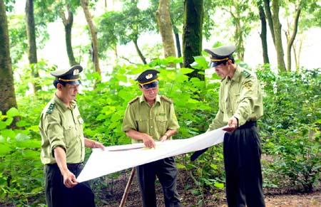 Quyết định thành lập Trạm Kiểm lâm địa bàn liên xã Cư Yang thuộc Hạt Kiểm lâm huyện Ea Kar