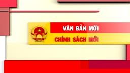 Triển khai hướng dẫn thực hiện một số quy định của Thông tư số 19/2014/TT-BNV