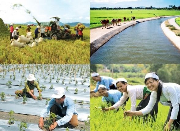 Thực hiện Nghị quyết Liên tịch của Chính phủ và Đoàn Chủ tịch Ủy ban Trung ương MTTQ Việt Nam về phối hợp thực hiện giảm nghèo bền vững xây dựng nông thôn mới, đô thị văn minh