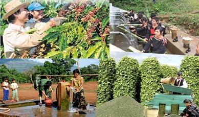 Thành lập Hội đồng thẩm định Báo cáo đánh giá tác động môi trường Dự án Cấp đất sản xuất