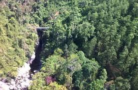 Báo cáo số liệu hiện trạng rừng năm 2016