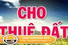 Quyết định cho Trường mầm non tư thục 1/6 thuê 507m2 đất tại phường Tân Lợi, thành phố Buôn Ma Thuột