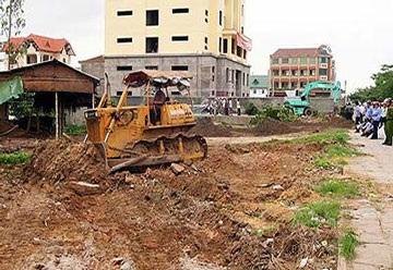 Chủ trương hỗ trợ cây trồng khi Nhà nước thu hồi đất