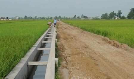 Chuyển mục đích sử dụng nguồn kinh phí thực hiện chính sách hỗ trợ để bảo vệ và phát triển đất trồng lúa chưa sử dụng sang đầu tư kiên cố hóa kênh mương các công trình thủy lợi trên địa bàn huyện Krông Bông