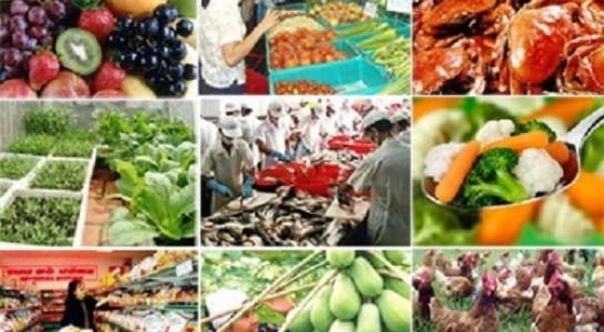 Báo cáo việc thực hiện chính sách, pháp luật về an toàn thực phẩm trên địa bàn tỉnh