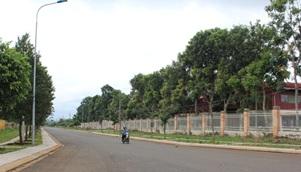 Điều chỉnh vị trí quy hoạch Cụm Công nghiệp Ea Drơng, huyện Cư M'gar