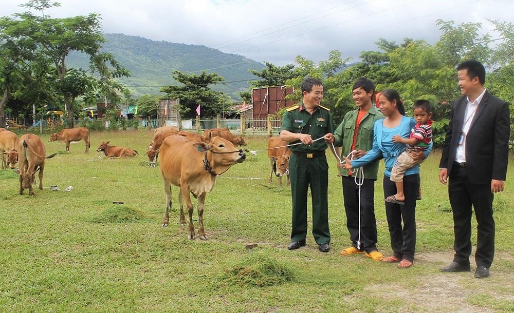 Hỗ trợ kinh phí mua bò tặng các hộ nghèo có nạn nhân tử vong do tai nạn giao thông năm 2016 trên địa bàn huyện Lắk