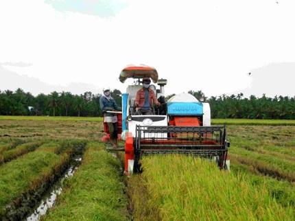 Ưu tiên hỗ trợ cho cá nhân vay vốn mua sắm trang thiết bị sản xuất  nông nghiệp