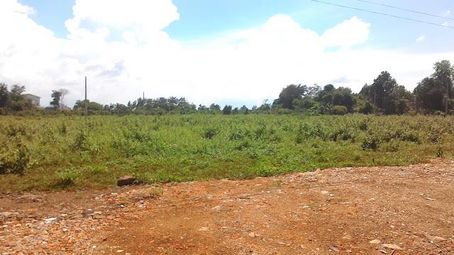 Điều chỉnh tên dự án: Đầu tư bán đấu giá khu đất thu hồi của Công ty CP khai thác và chế biến lâm sản huyện Krông Búk .