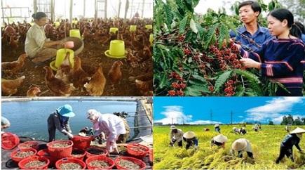 Thông báo danh mục một số văn bản của Trung ương và địa phương về cơ chế, chính sách, hướng dẫn hỗ trợ đầu tư vào lĩnh vực nông nghiệp và phát triển nông thôn