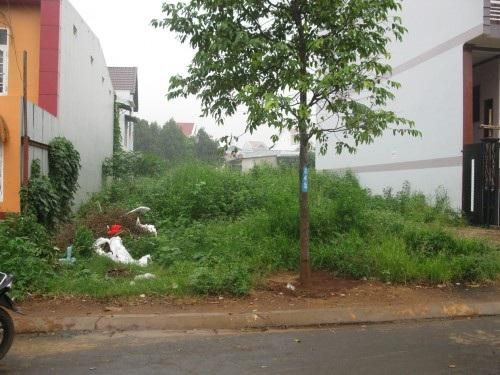 Giao đất có thu tiền sử dụng đất không thông qua đấu giá cho 02 hộ dân tại phường Tân Lợi, thành phố Buôn Ma Thuột.
