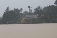 Đề nghị hỗ trợ kinh phí khắc phục hậu quả mưa lũ, ngập lụt tháng 11/2016 trên địa bàn tỉnh Đắk Lắk