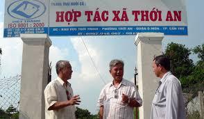 Tham mưu UBND tỉnh hỗ trợ kinh phí thành lập mới Hợp tác xã
