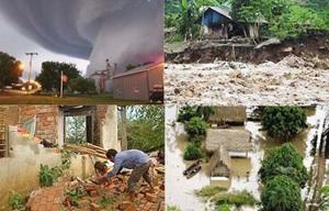Xử lý kiến nghị của UBND các huyện: Krông Ana, Krông Pắc, M'Drắk liên quan đến hỗ trợ kinh phí khắc phục hậu quả thiên tai