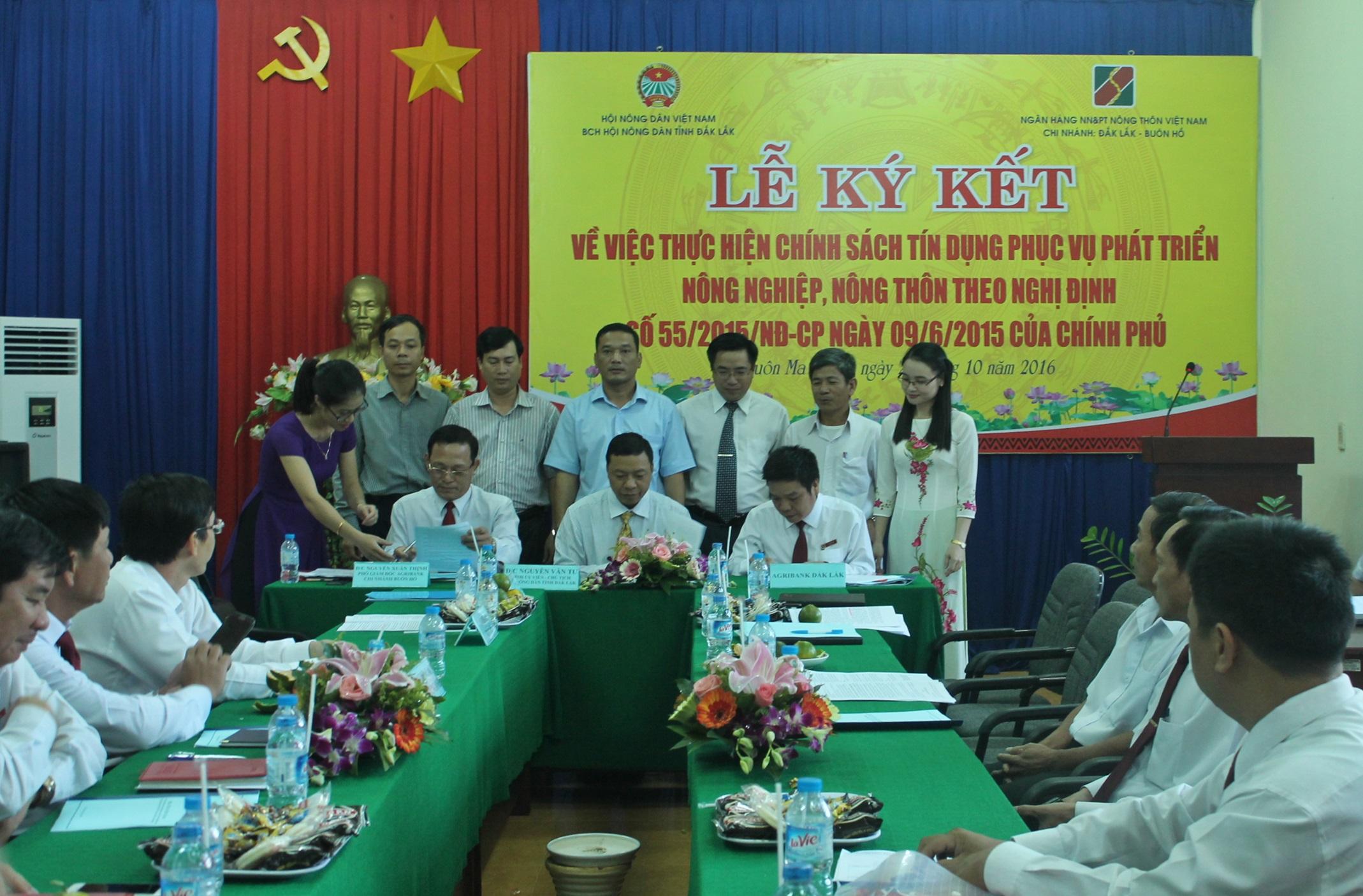 Tháng 11/2016, dư nợ cho vay tại Agribank Đắk Lắk tăng 300 tỷ đồng.