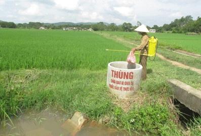 Tăng cường quản lý buôn bán, sử dụng thuốc bảo vệ thực vật trên địa bàn tỉnh