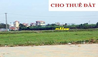 Quyết định cho Công ty TNHH Trường Linh thuê 5.432 m2 đất tại phường Tân Lợi, thành phố Buôn Ma Thuột
