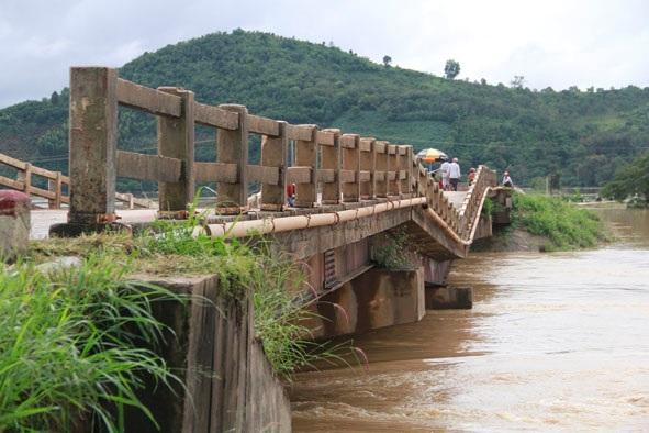 Bố trí kinh phí để đảm bảo giao thông qua sông Krông Ana, huyện Krông Bông do cầu Cư Păm (Km21+050, tỉnh lộ 9) bị hư hỏng.