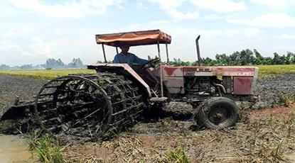 Giao chỉ tiêu kế hoạch sản xuất nông nghiệp vụ Đông Xuân 2016 - 2017