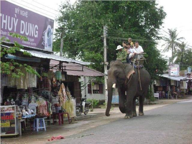 Lúc lắc du lịch cưỡi voi