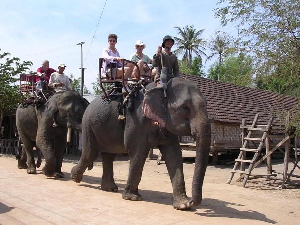 Quyết định sửa đổi, bổ sung một số điều của Quy định về trình tự, thủ tục thực hiện các chính sách về bảo tồn voi trên địa bàn tỉnh.
