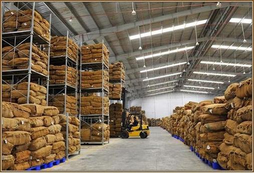 Phê duyệt quy hoạch tổng mặt bằng Dự án Kho chứa hàng hóa của Doanh nghiệp tư nhân Thuận Phúc tại xã Ea Tu, thành phố Buôn Ma Thuột
