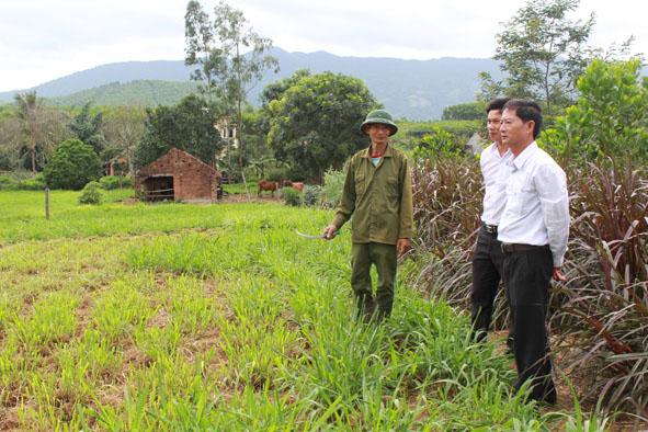 Phê duyệt Kế hoạch sử dụng đất năm 2017 của huyện M'Đrắk.